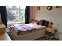 Large Double Room to let Female only (close to Town Center)