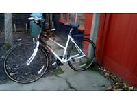 21 speed Raleigh bike in very good condition