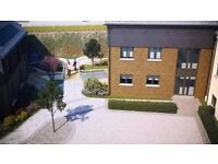 1 bedroom bespoke luxury student apartments to rent from January