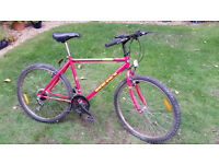 Red Teenagers Bicycle