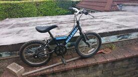 Child Bike 4-5 Year oldish