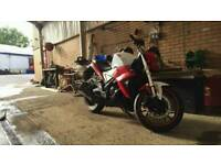 White knuckle 125