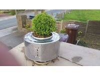 Stainless steel Planter for Christmas trees or other plants/ can deliver local