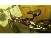 dunlop sports bike