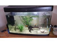 120 litre fish tank for sale sold as seen*collection only*