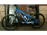Rockhopper mountain bike