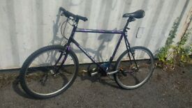 DIAMONDBACK SORRENTO MOUNTAIN BICYCLE 21 SPEED 26 INCH WHEEL AVAILABLE FOR SALE