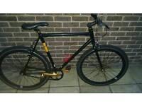 NO LOGO single speed bike