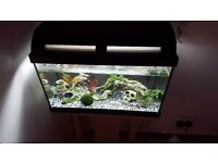 35L fish tank with stand