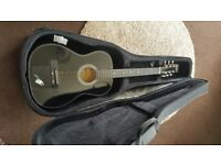 Guitar and Hard Case Carrier