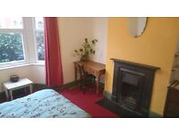 large light double room available between end Nov till 10th Jan