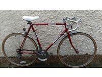 Astra 10 Road Bike