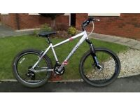 Cool Saracen Acid Small Mountain Bike £55