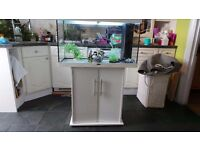 Jewel Rio Aquarium for sale £200 ONO, collection only.