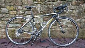 Specialized Roubaix Carbon Campagnolo Size 49 Excellent Condition