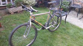 19 inch Orange Vit 2 titanium mountain bike cycle