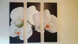 Large 3 x canvas wall art orchid