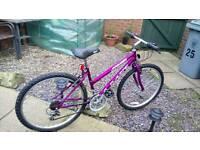 Mountain bike 🚲