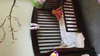 3 in 1 crib toddler bed single bed.