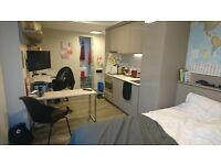 ATTENTION MASTER AND LANGUAGE STUDENTS: 18 sq feet Studio w en-suite at Vita Student, from January
