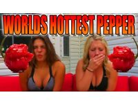 100 PCS *THE WORLDS HOTTEST CHILLI SEEDS* Carolina Reaper Seeds BUY 2 GET 1 FREE