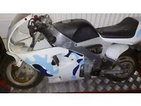 Polini mini moto dreambike swap? Offers
