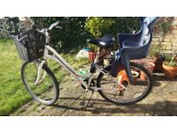 Women's bike with toddler seat and basket