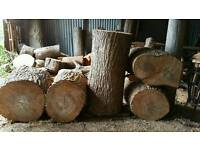 Chinese elm, planking, carving