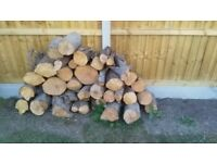 Firewood for wood burners, stoves and fires.