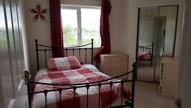 Double room to rent. £450pcm