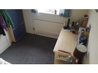 Single room to rent in Horfield, very cheap rent!