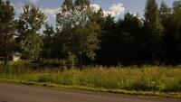 Land for sale, Alfred ON