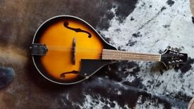 Blue Moon Mandolin