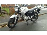 Yamaha ybr125. 12 month mot. Injection model