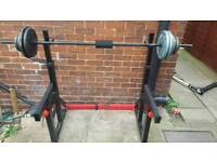 Cast iorn weights and body max rack