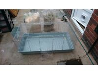Large indoor rabbit cage (with food, hay and sawdust)