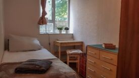 Opportunity! beatiful and cosy single room in East Finchley!