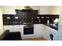 2 bed flat direct from landlord large room N17 TOTTENHAM