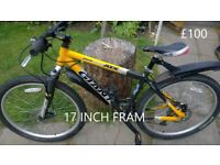 WORKING BIKES FOR SALE FROM £25 TO £100 THROSK