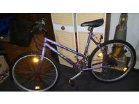 Ladies giant 18 speed bike,new basket,vgc,serviced