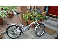 Folding city bike for adult