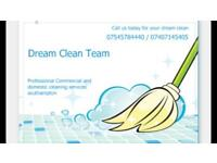 Dream Clean Team