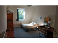 Room in West End available for July