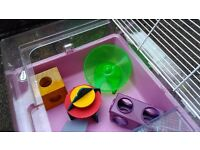 Dwarf Hamster Cage + Accessories