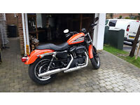 Harley Davidson XL883R in very good condition.