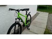 Norco storm 7.3 mountain bike