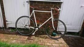 Fixed wheel bike 60cm 23.5'' frame custom bicycle