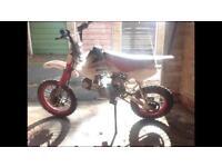 125cc Lifan Pitbike