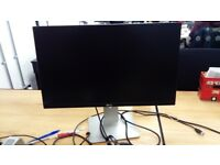 Dell 24 inch LCD Monitor widescreen