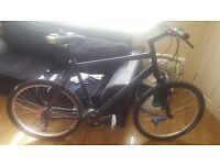marin mountain bike very light large frame £120